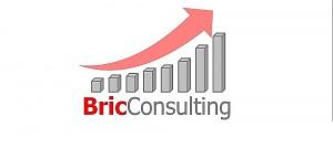 Bric Consulting Logo